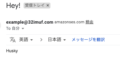 /images/aws/ses-sending-email/01_test-mail-verify-domains.png